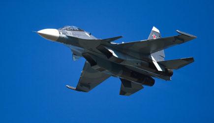 Птица не могла «сбить» Су-30 в Сирии